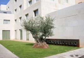 NH Hotel Palacio del Duero (Zamora)